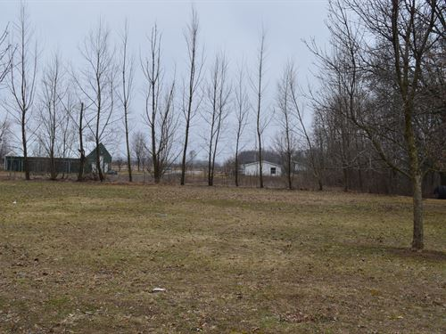 Lot 8 Buildable Rural Country Lot : Oxford : Marquette County : Wisconsin
