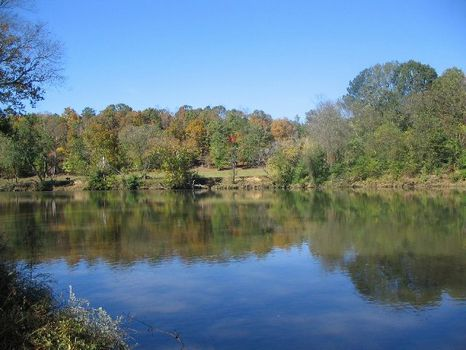 Lot on the Tallapoosa River : Lafayette : Chambers County : Alabama