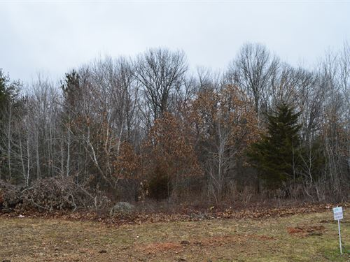 Lot 36 Buildable Rural Country Lot : Oxford : Marquette County : Wisconsin
