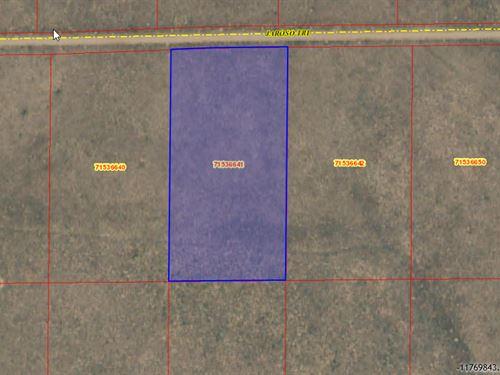 Affordable Terms -5-Acre-715-366-41 : Sanford : Costilla County : Colorado
