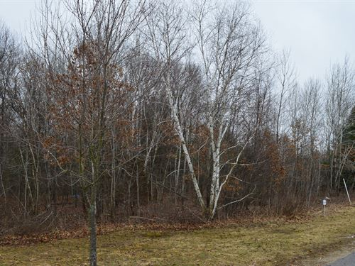 Lot 37 Buildable Rural Country Lot : Oxford : Marquette County : Wisconsin