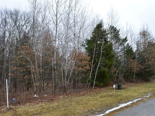 Lot 38 Buildable Rural Country Lot : Oxford : Marquette County : Wisconsin