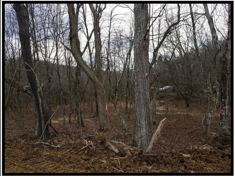 164 Acres On Scioto Trail Retreat Land For Sale Waverly Ross