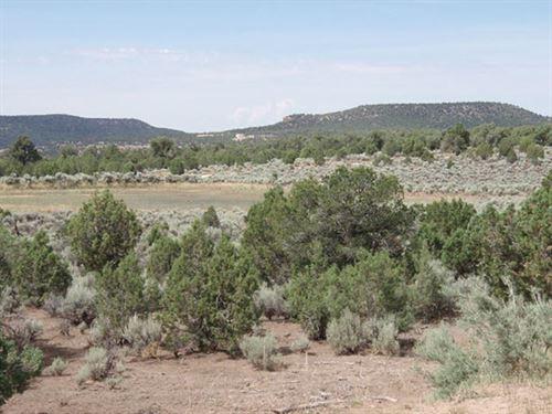 Agricaltural Land For Sale : Thatcher : Las Animas County : Colorado