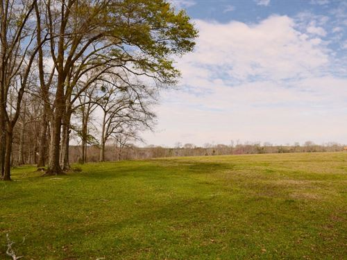 Barbour County Pasture Land : Clayton : Barbour County : Alabama