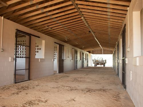 Central Florida Ranch & Equestrian : Howey In The Hills : Lake County : Florida