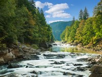 National Forest And Creek Property : Murphy : Cherokee County : North Carolina
