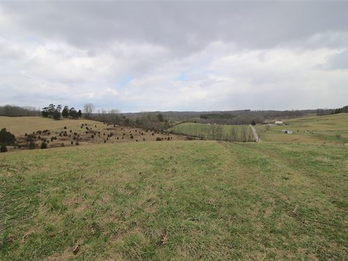Kott Camp - 26 Acres : Hamden : Vinton County : Ohio