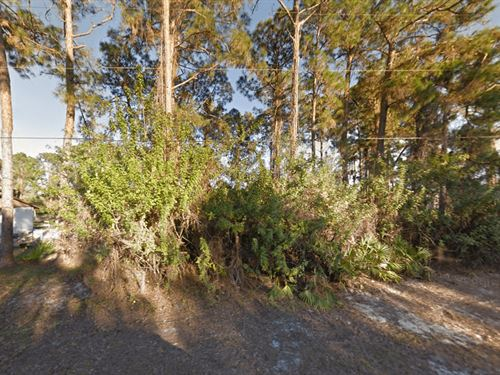 Vacant Land 4 Sale In Lehigh Acres : Lehigh Acres : Lee County : Florida