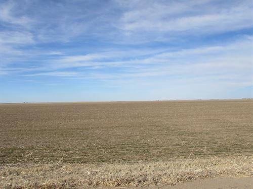 Sherman County Excellent Dryland : Goodland : Sherman County : Kansas