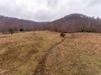 Fleming Co. Kentucky Farm Auction 1 : Hillsboro : Fleming County : Kentucky