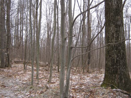 9 Ac Building Lot Borders State : Dryden : Tompkins County : New York