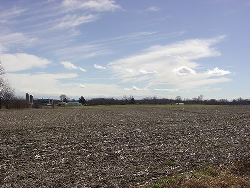 Real Estate Auction - 114.27 Acres : Auburn : De Kalb County : Indiana
