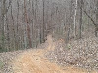 Lot 19 Timber Ridge Subdivision : Ferguson : Wilkes County : North Carolina