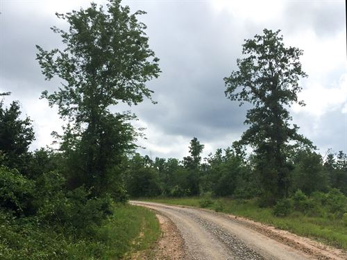 18 Ac Willow Springs Road : Oakhurst : San Jacinto County : Texas