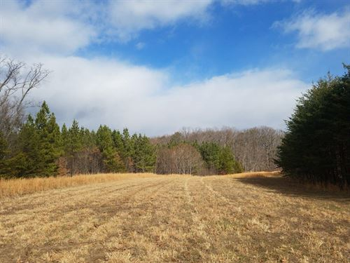 Redbirds Airyard And Waterfront Lot : Moneta : Bedford County : Virginia
