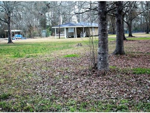 Land For Sale Tickfaw, La : Tickfaw : Livingston Parish : Louisiana