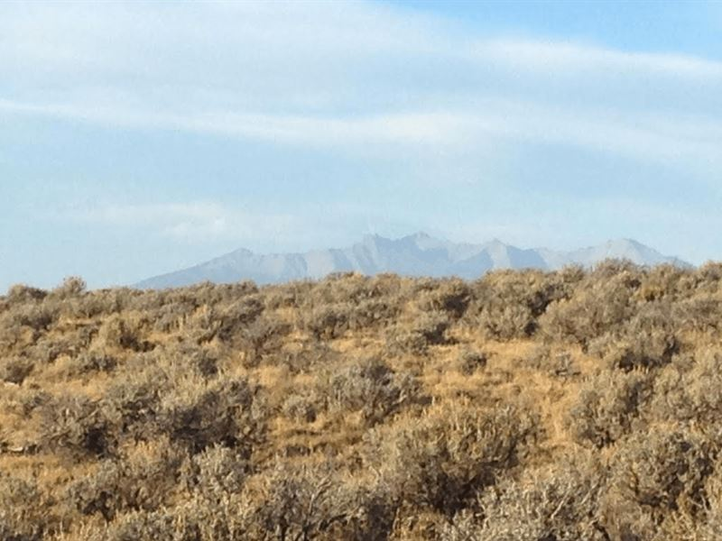 4.92 Acres In Alamosa, co : Alamosa : Costilla County : Colorado