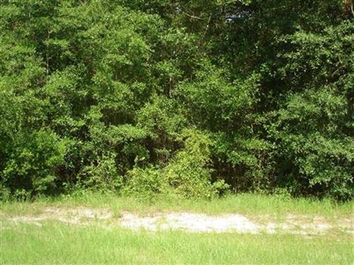 Vacant Land For Sale : Jennings : Hamilton County : Florida