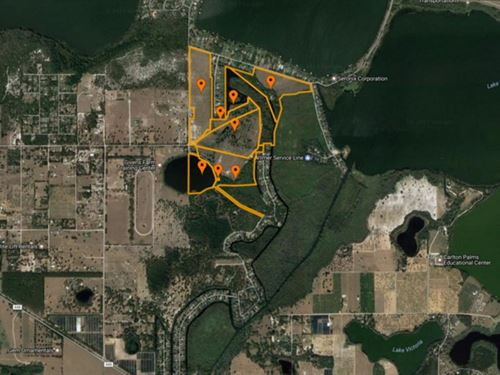 280 Ac Rural Land Close To Amenitie : Tavares : Lake County : Florida