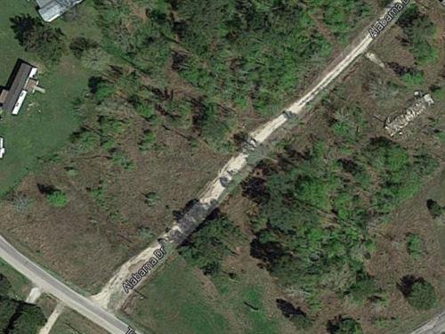 Triple Lots Side By Side Buy 1 : Huntsville : Walker County : Texas