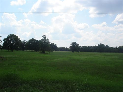 Country Acreage Building Site : Pattonville : Lamar County : Texas