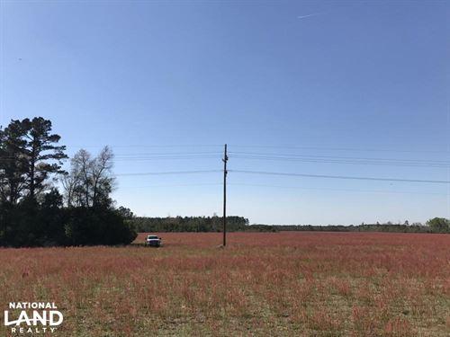 Ulmer Small Farm & Recreation : Ulmer : Allendale County : South Carolina