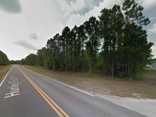 .25 Acres In Palm Bay, FL : Palm Bay : Brevard County : Florida