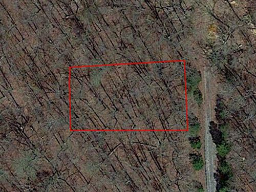 Open Lot In The Ozarks Of Arkansas : Hroseshoe Bend : Izard County : Arkansas