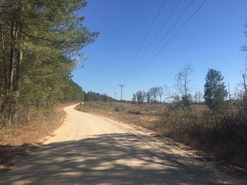 Carolina Ashley : Greensboro : Greene County : Georgia
