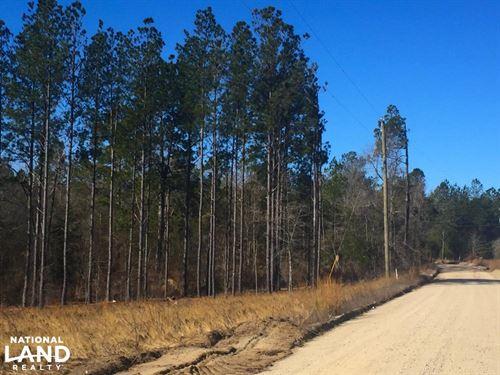 25 Acre Mt. Pisgah Recreational Inv : Kershaw County : South Carolina