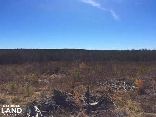 Mt. Pisgah Longterm Investment : Kershaw County : South Carolina