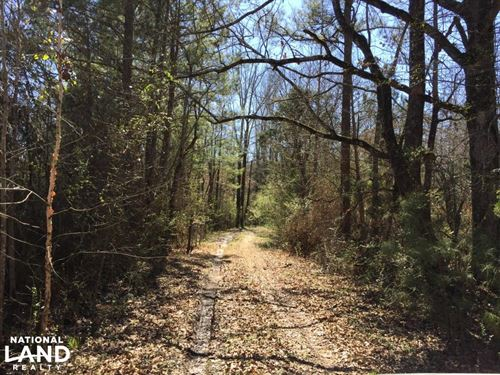 Maben 106 Timber, Recreation, Homes : Maben : Oktibbeha County : Mississippi