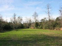 100 Acres In Perry County : Brooklyn : Perry County : Mississippi
