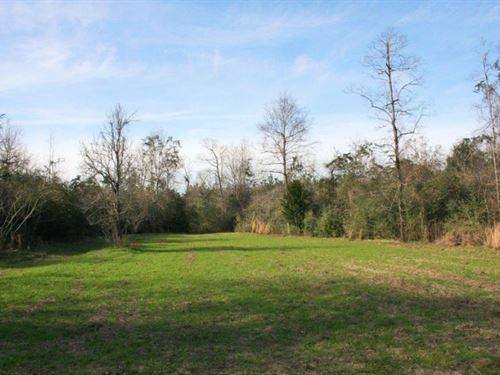 100 Acres In Perry County In Brookl : Brooklyn : Perry County : Mississippi