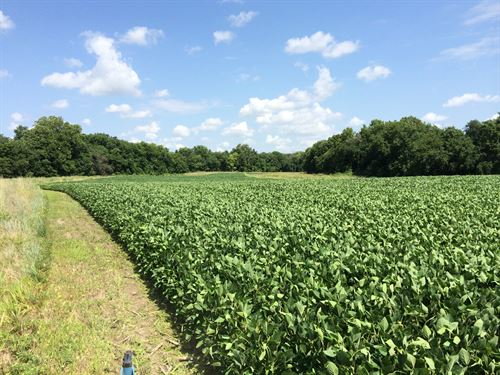 Shaps Ranch : Lane : Franklin County : Kansas