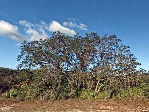 Polk County, Florida $24,500 Neg. : Indian Lake Estates : Polk County : Florida