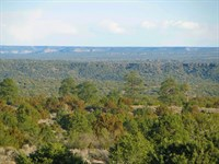 Ponderosa Pine Wooded Az Ranch : Saint Johns : Apache County : Arizona