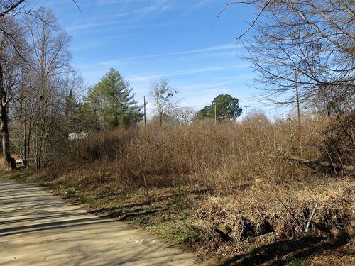 Baker Circle Residential Lots : Marietta : Greenville County : South Carolina