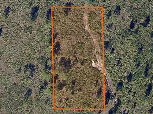 Polk County, Florida $7,000 Neg. : Lake Wales : Polk County : Florida