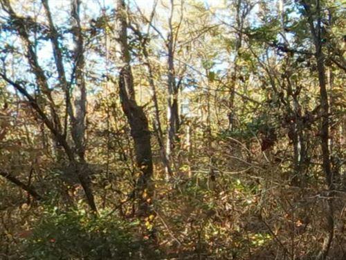 Saline County, Arkansas $12,500 Neg : Hot Springs : Saline County : Arkansas