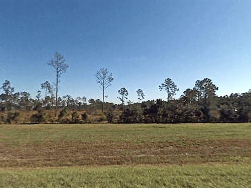 Recreational Land For Sale : Lake Wales : Polk County : Florida