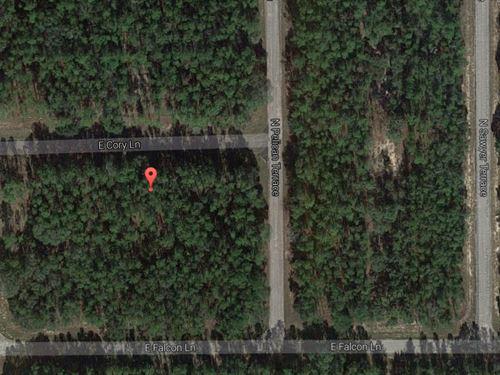 Vacant Lot For Sale : Citrus Springs : Citrus County : Florida
