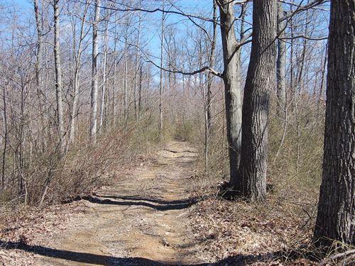 Carrs Run - 52 Acres : Beaver : Pike County : Ohio