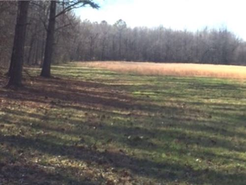 72.5 Acres In Panola County : Pope : Panola County : Mississippi