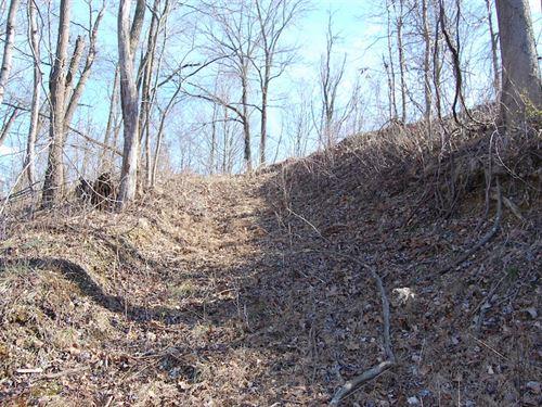 Gravel Rd - 19 Acres : Beaver : Pike County : Ohio