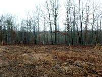 New Home Site On 4 Acres In Country : Peace Valley : Howell County : Missouri