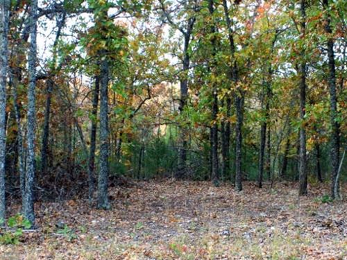 7.8 Acres Near Bull Shoals W Electr : Gainesville : Oregon County : Missouri