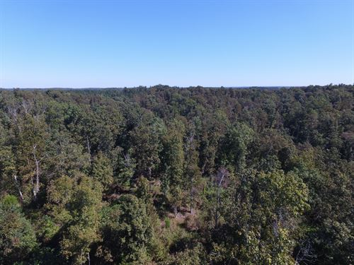 183 Acre Hunting Tract : Nunnelly : Hickman County : Tennessee