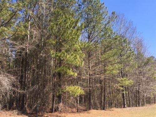 David & Beth Novack Tract : Candor : Montgomery County : North Carolina